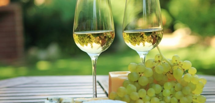 Das Wein Paradies Gardasee